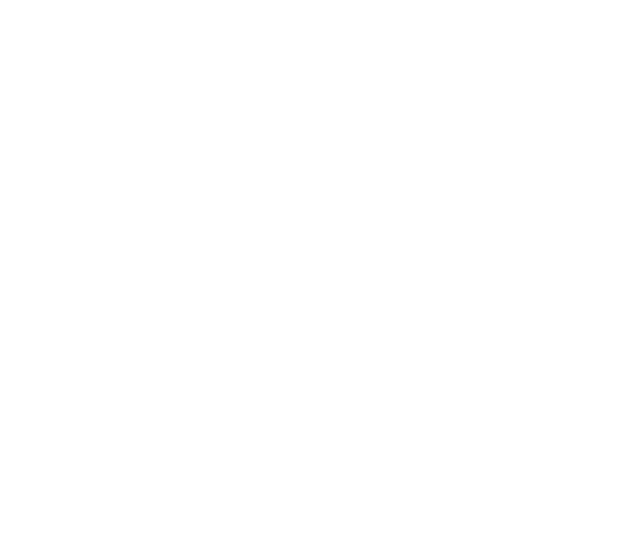 Punch Fitness Alive